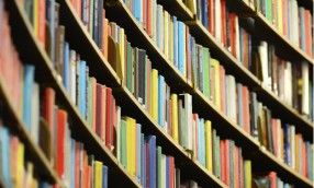 Book Review: ORGANIZATIONS THAT LEARN