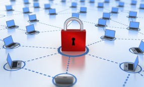 Survey: Small Business Cybersecurity