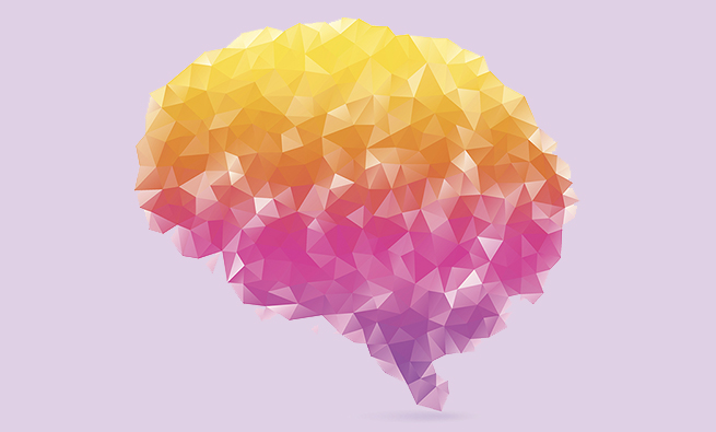 Polygon human brain on white background with shadow.