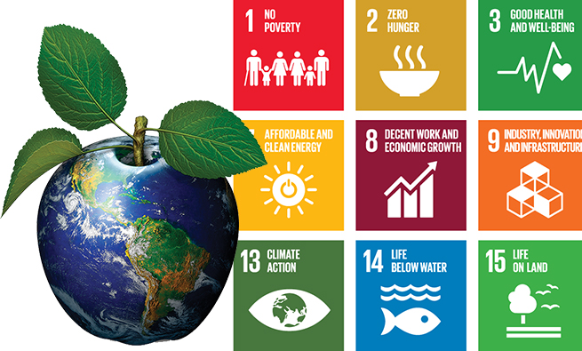 E_2016_SDG_Poster_all_sizes_without_UN_emblem
