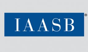 Martin Baumann Named New IAASB Chair